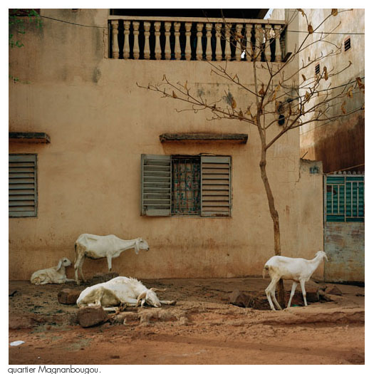 bko_12_12_bamako