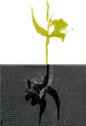 OPV Le suicide © Marie Montbrun, Stéphanie Lucas