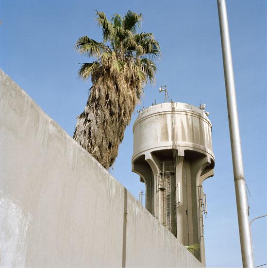 damas2010_17