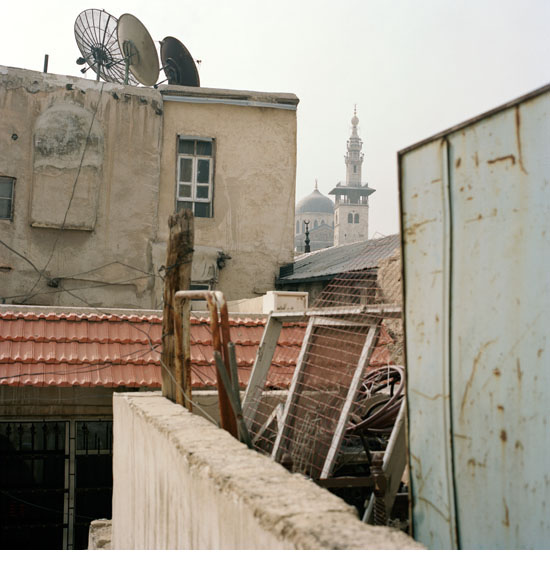 damas2010_22