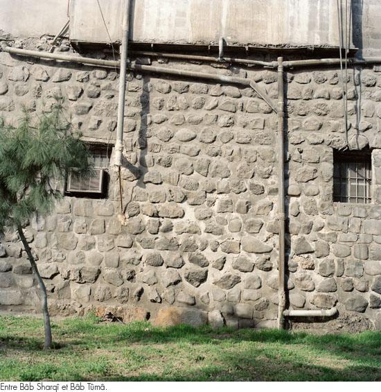 damas2010_26