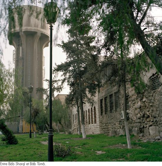 damas2010_27