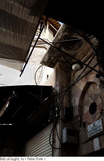 damas2010_50